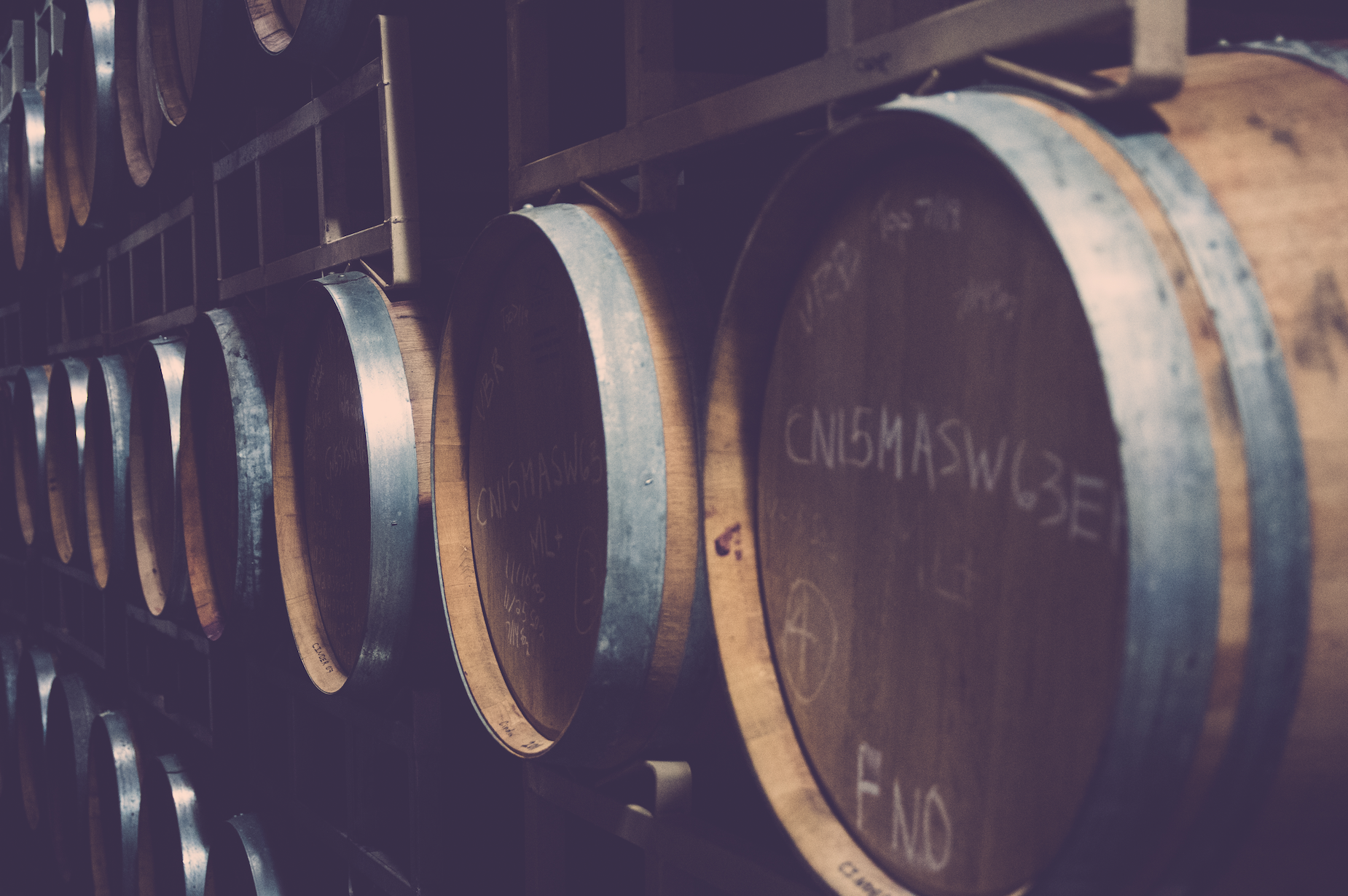 Barrels in a winery