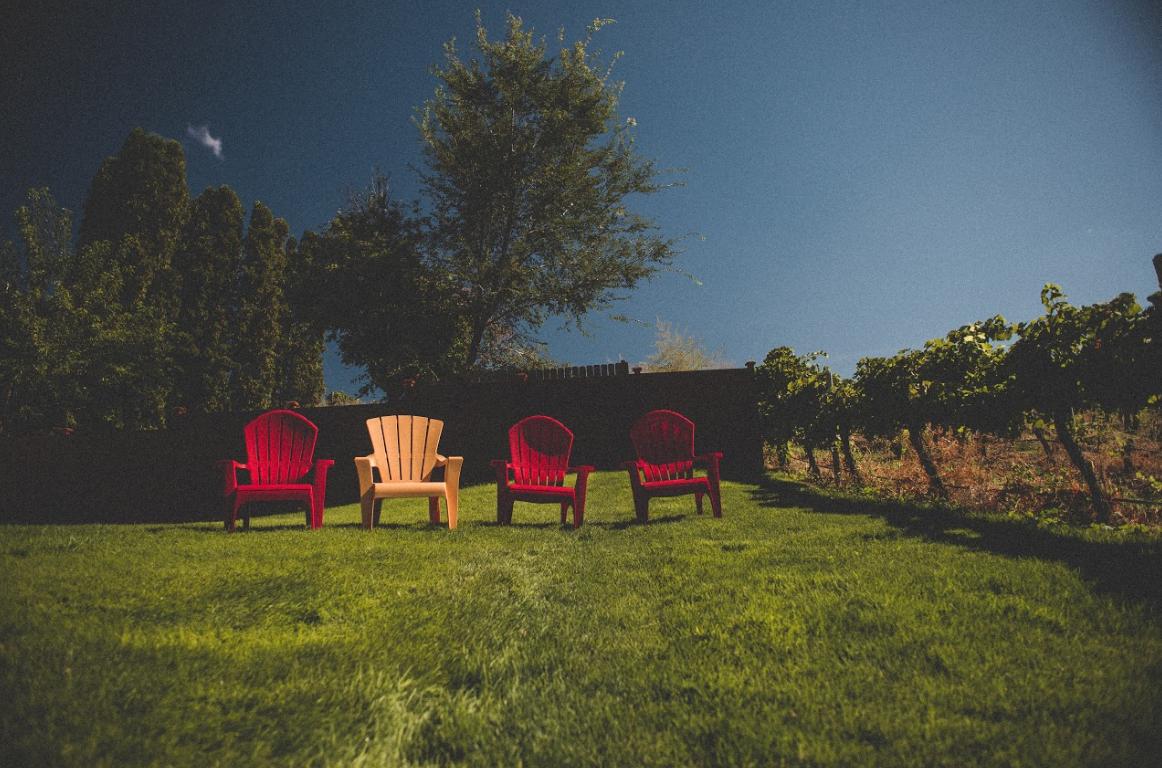 Relaxing in the Vineyard in Idaho