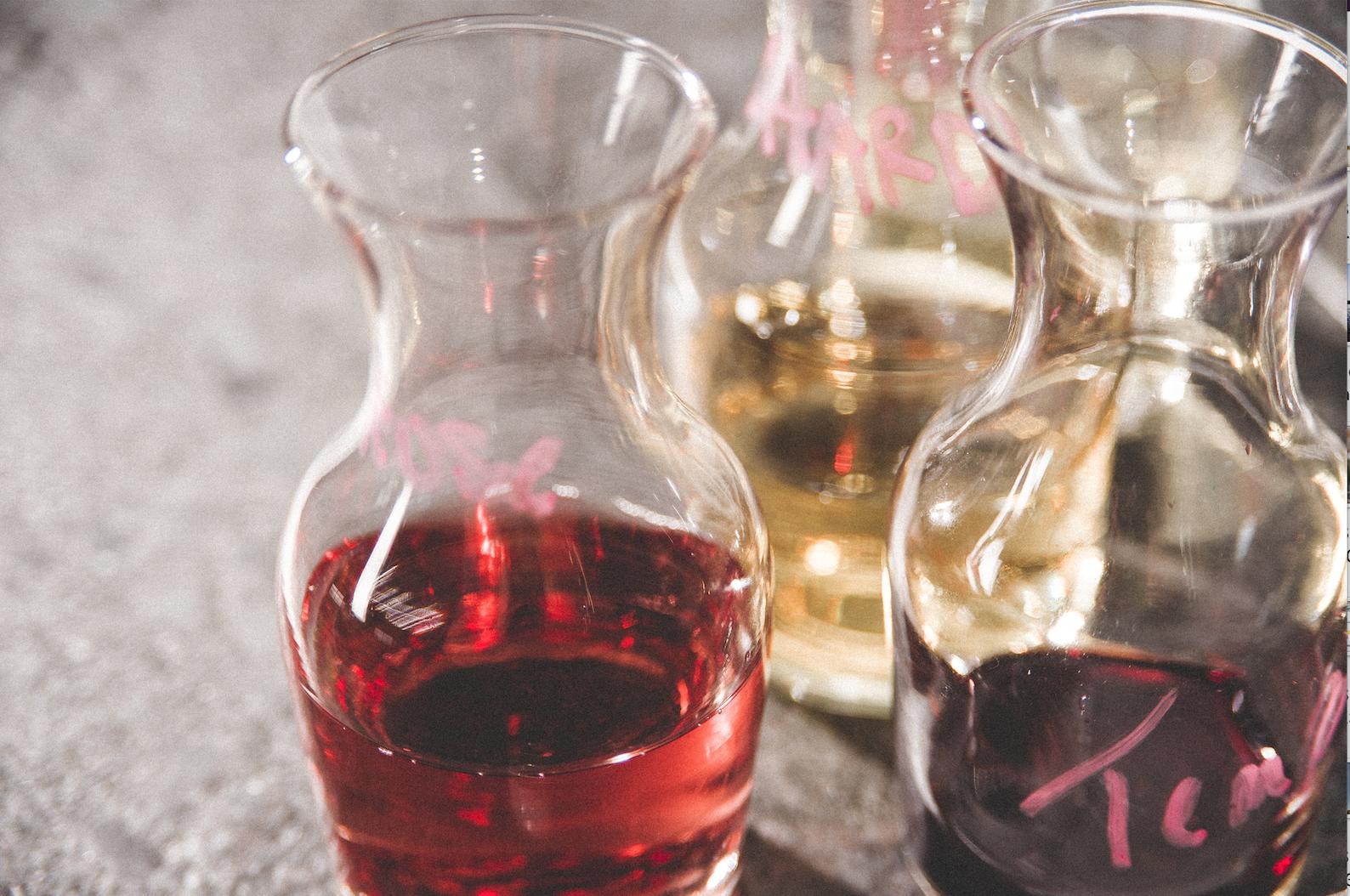 wine samples in idaho