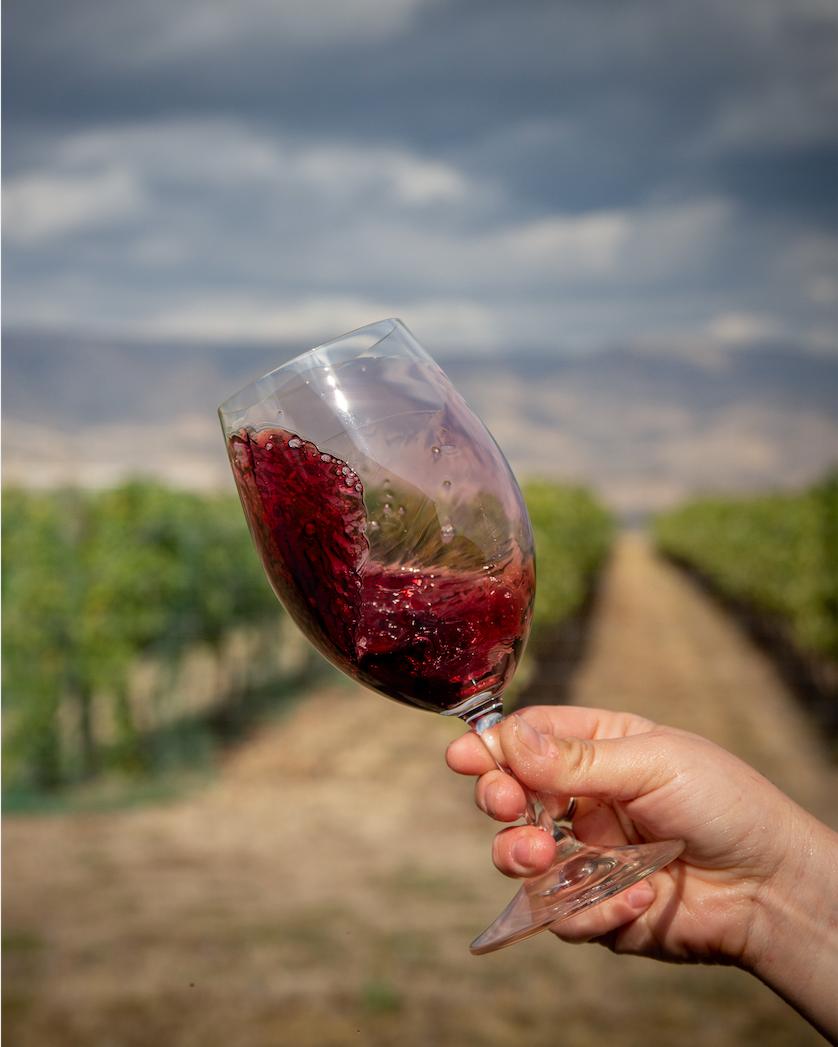 Read Wine in Idaho